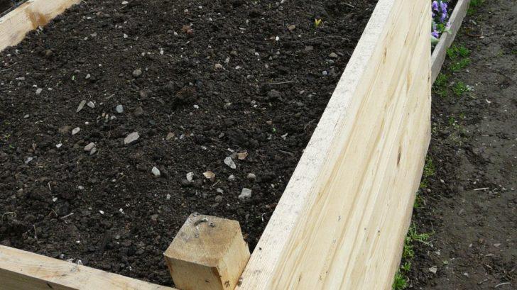 v-breznu-vas-nejvice-prace-ceka-na-uzitkove-zahrade-kde-si-pripravte-vsechny-zahony-na-novou-sezonu.-728x409.jpg