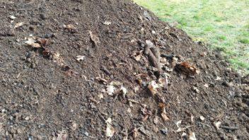 kompost-je-jednim-z-nejdulezitejsich-materialu-pri-peci-o-pudu-352x198.jpg