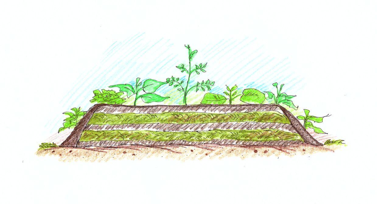 kompostovaci-zahon-pro-zuzitkovani-posecene-travy.jpg