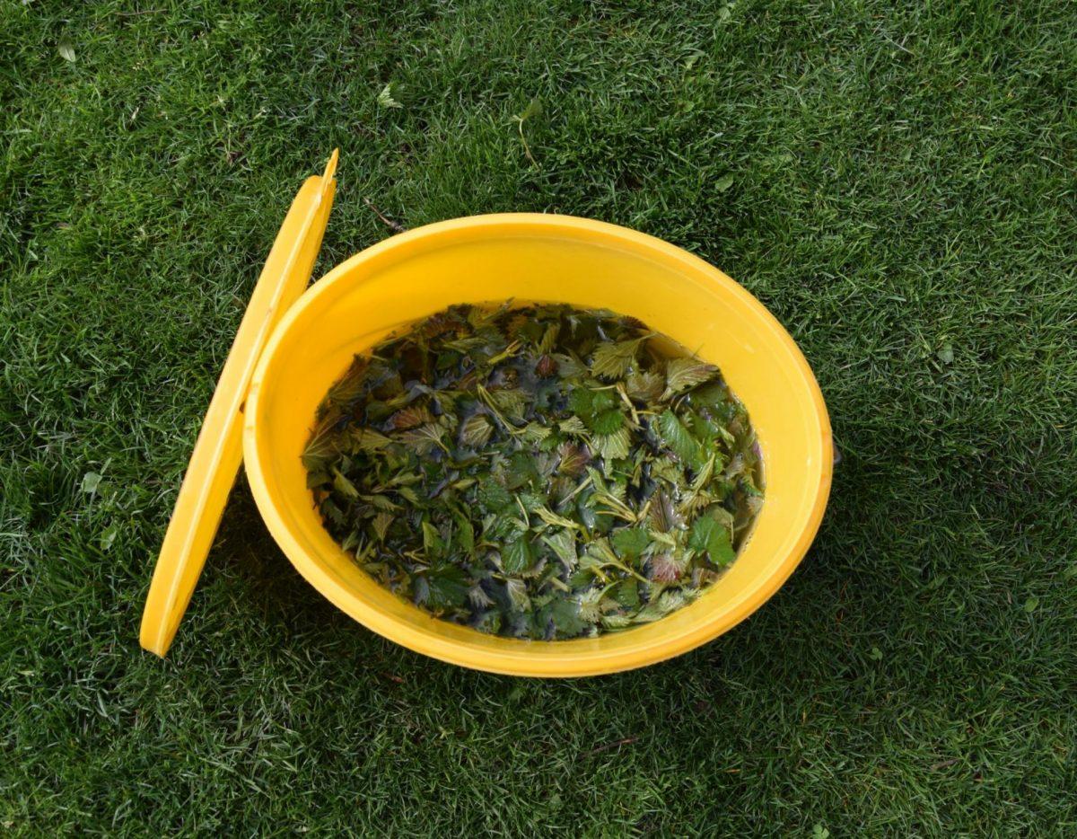 koprivovou-jichou-dohnojujte-jiz-vysazene-rostliny-narocne-predevsim-na-dusik-1200x1200.jpg