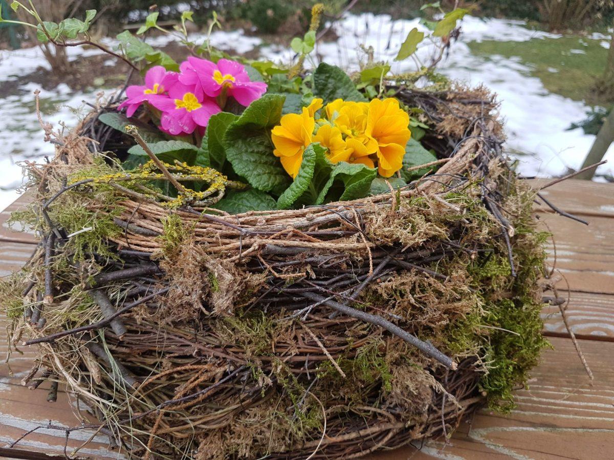 Květinové hnízdo se hodí do interiéru iexteriéru