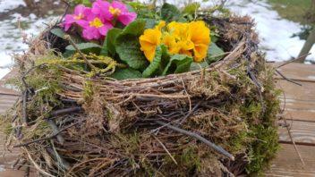 kvetinove-hnizdo-se-hodi-do-interieru-i-exterieru-352x198.jpg