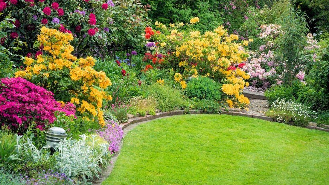 okrasna-zahrada-kere-1100x618.jpg
