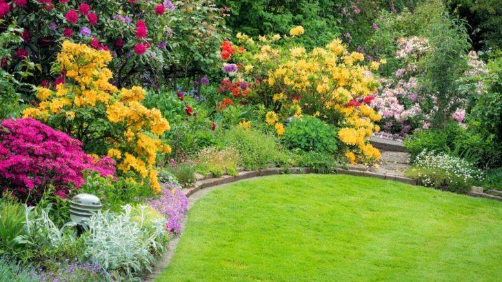 okrasna-zahrada-kere-728x409.jpg