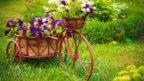 zahradni-dekorace_shutterstock_148356686-144x81.jpg