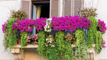 balkon-352x198.jpg