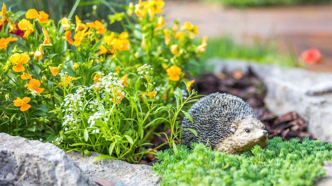 dekorace-jezek-zahradni-dekorace--1100x618.jpg
