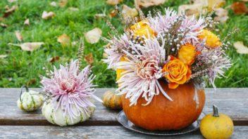 dekorace-z-dyni-podzimni-dekorace-2-352x198.jpg