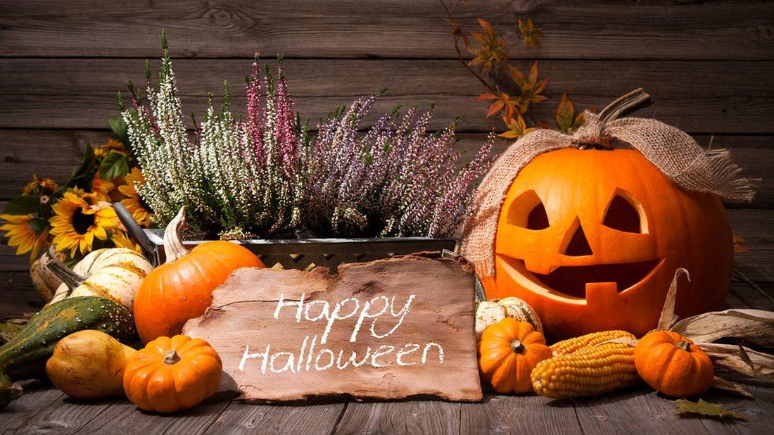 dyne-halloween-halloween-halloweenske-dekorace-dyne-3-1100x618.jpg