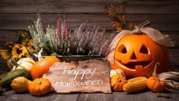dyne-halloween-halloween-halloweenske-dekorace-dyne-3-352x198.jpg