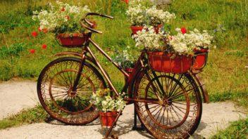 kolo-s-kytkama-osazene-kolo-kolo-zahradni-dekorace-dekorace-352x198.jpg