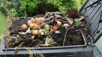 kompost-352x198.jpg