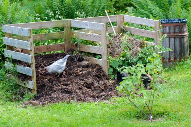 kompost-4-618x410.jpg