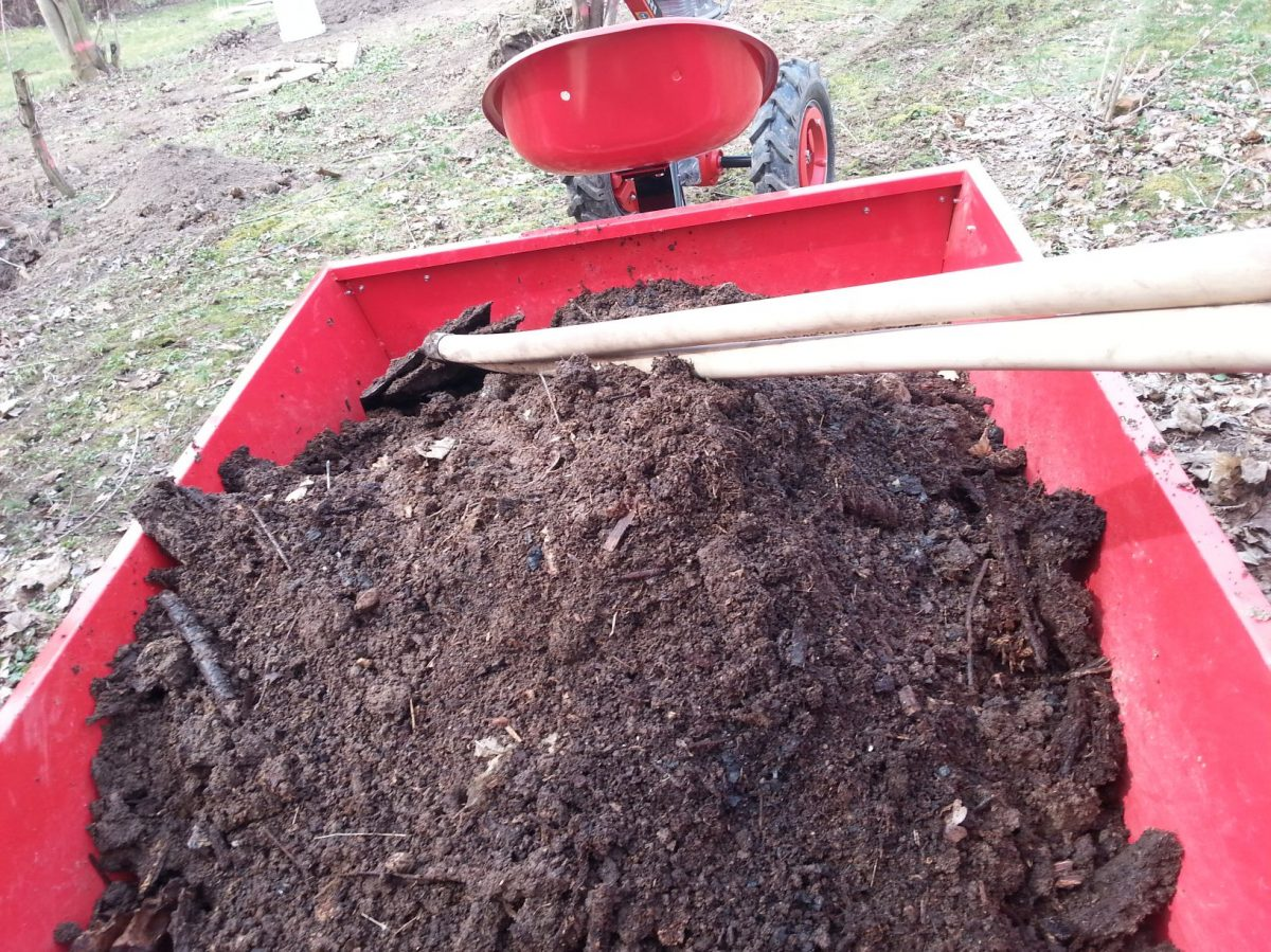 kompost-do-zahonu-nemusime-dodavat-kazdy-rok-nektere-sezony-si-vystacite-i-se-zelenym-hnojenim-1200x1200.jpg