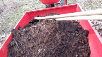 kompost-do-zahonu-nemusime-dodavat-kazdy-rok-nektere-sezony-si-vystacite-i-se-zelenym-hnojenim-352x198.jpg