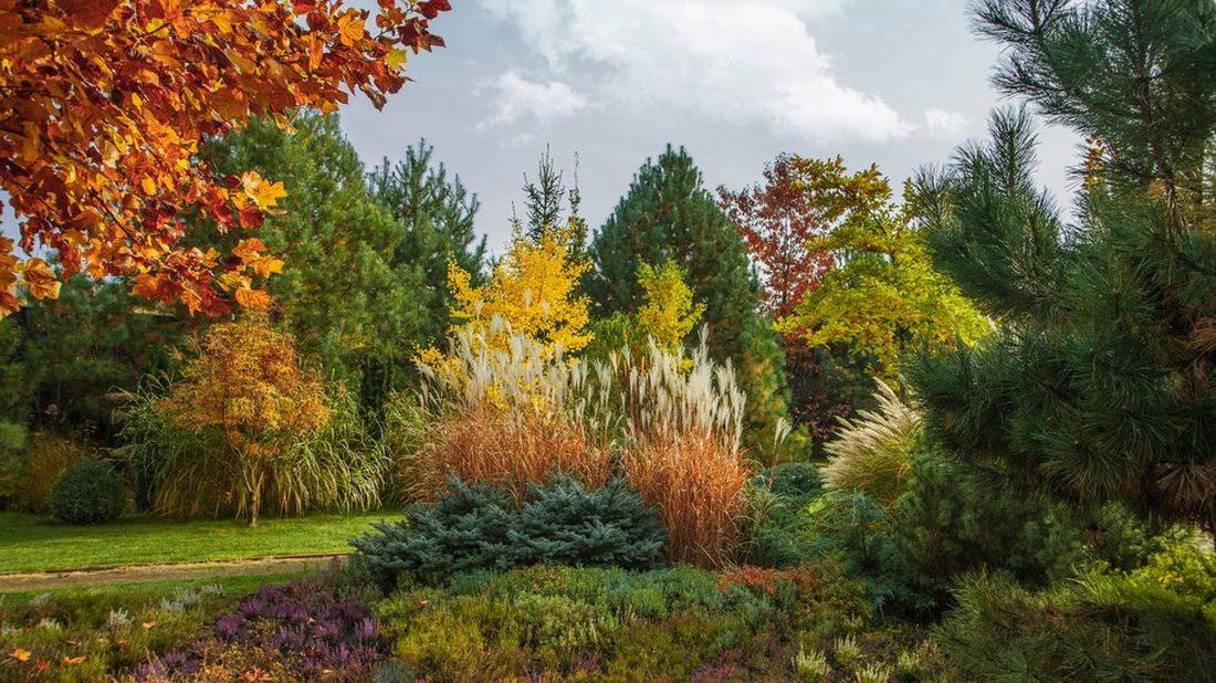 travy-podzimni-travy-podzimni-zahrada-zahrada-na-podzim-5-1100x618.jpg