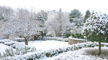 zahrada-v-zime-352x198.jpg