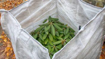 zazimovane-rostliny-zazimovani-rostlin-geotextilie-352x198.jpg