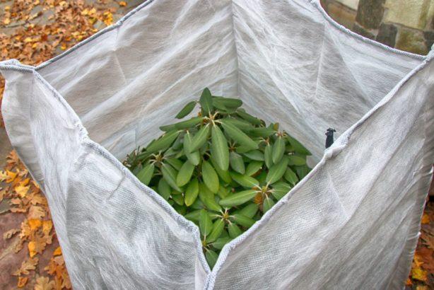 zazimovane-rostliny-zazimovani-rostlin-geotextilie-614x410.jpg