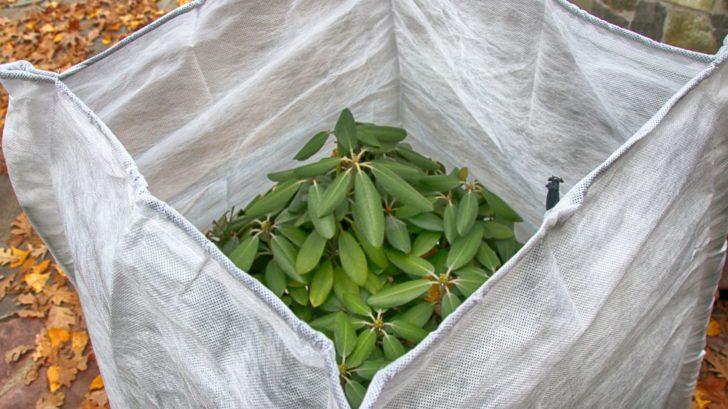 zazimovane-rostliny-zazimovani-rostlin-geotextilie-728x409.jpg