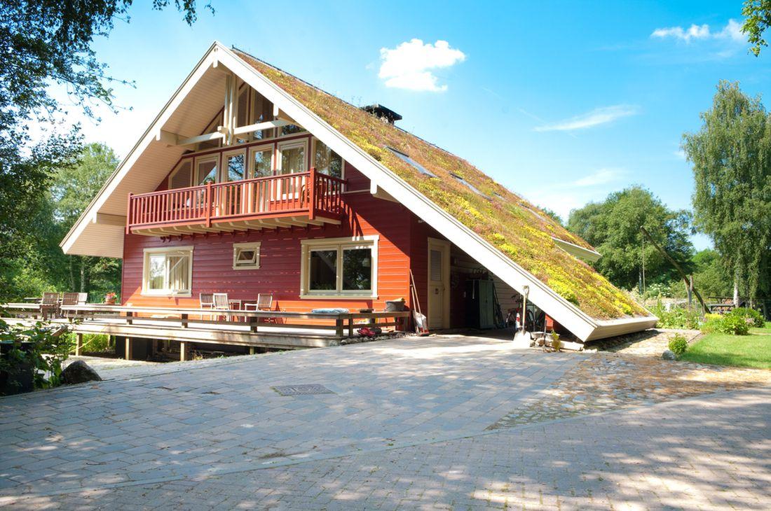 zelená střecha 3
