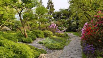 botanicka-zahrada-troja-352x198.jpg