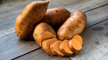 ipomoea-batatas-sladke-brambory-bataty-352x198.jpg