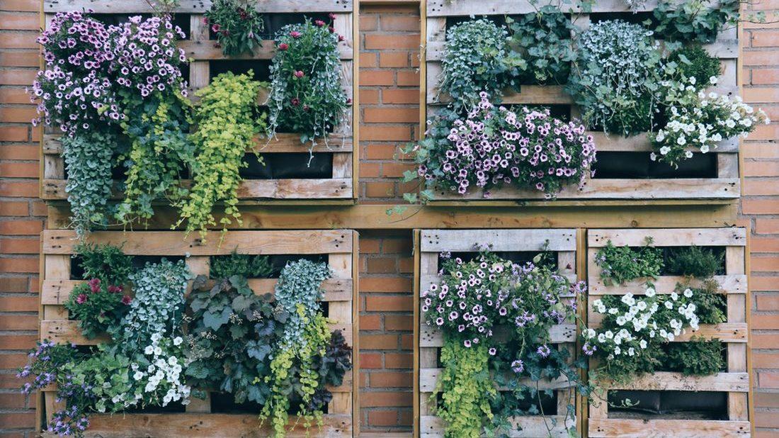 vertikalni-zahrada-z-palet-1100x618.jpg