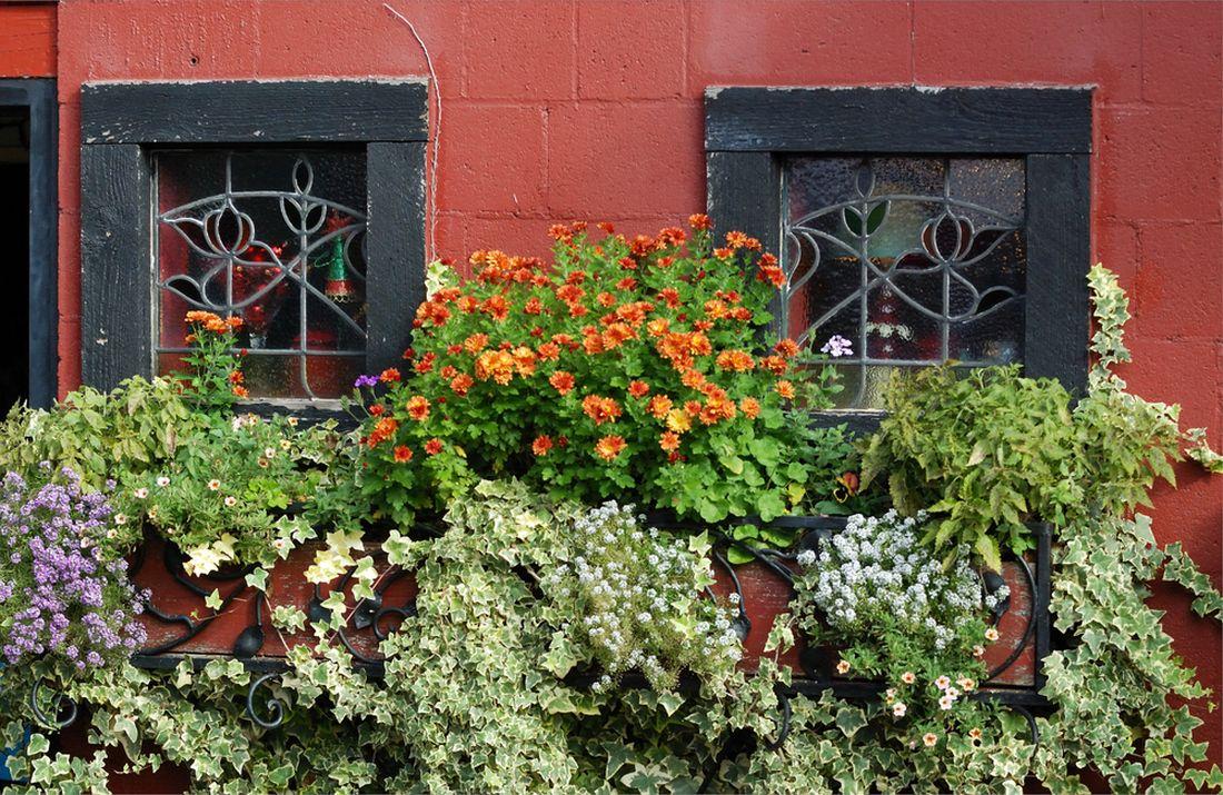 truhlik-s-kvetinami-a-brectanem.jpg