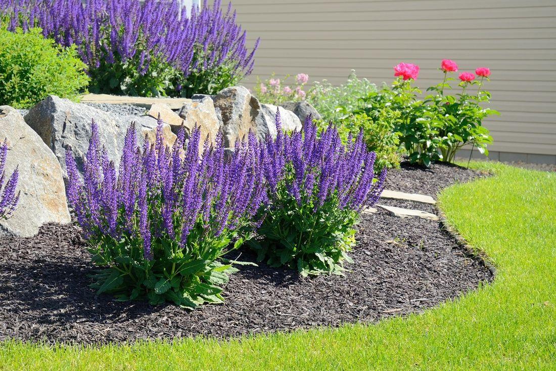 cim-nenapadnejsi-barva-mulce-tim-lepe-vynikne-krasa-rostlin.jpg