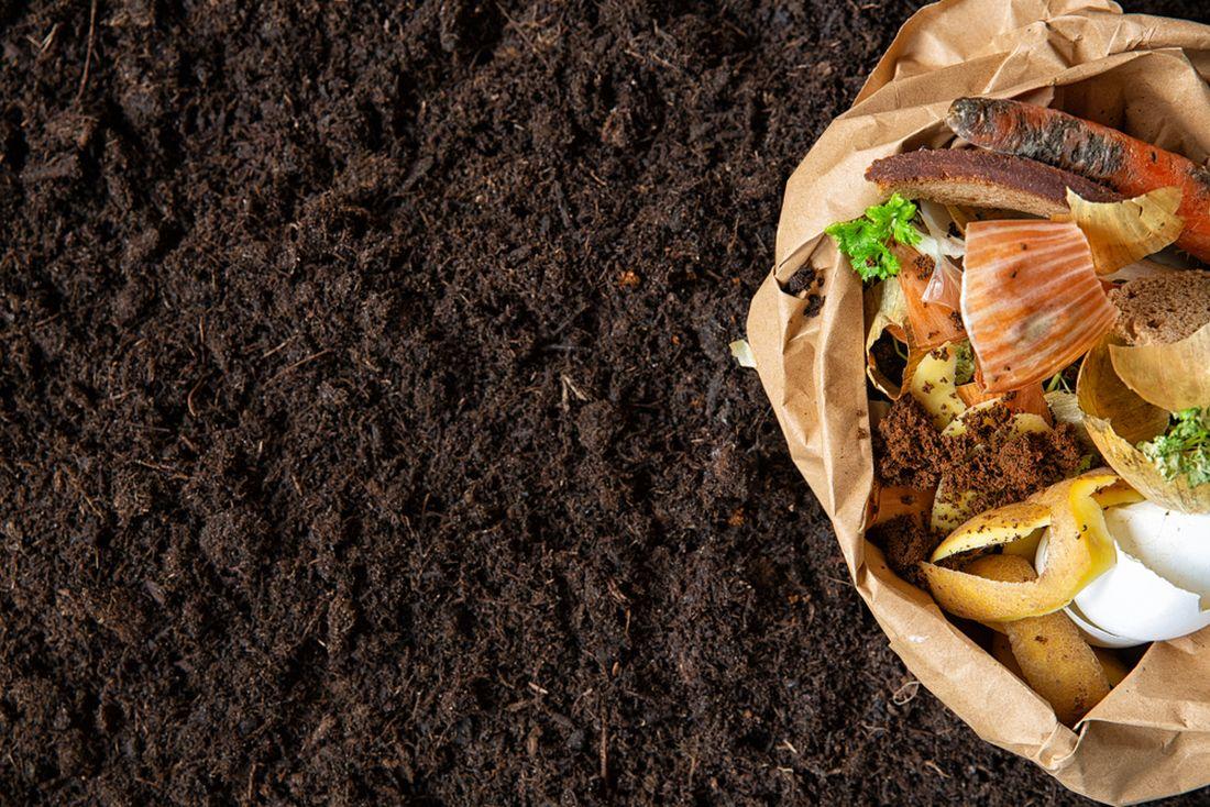 do-kompostu-mohou-prijit-i-nektere-kuchynske-zbytky-jejich-pouziti-pri-vyrobe-kompostu-ma-ale-sva-pravidla.jpg