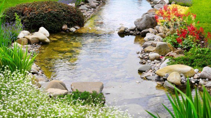 jarni-kvetouci-vysadba-kolem-potoka-728x409.jpg