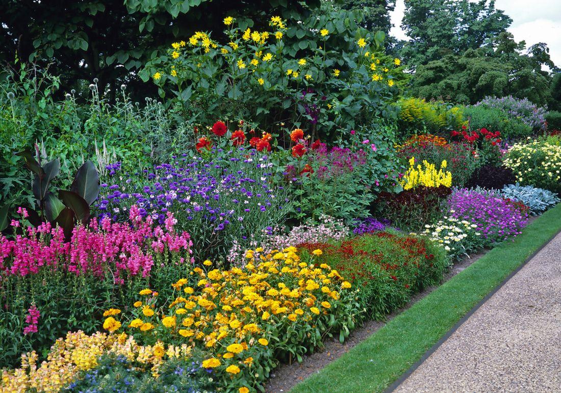ke-zmene-vnimani-zahrady-muze-vyznamne-prispet-i-uzky-pruh-travniho-porostu-v-sjednocujici-zelene-barve.jpg