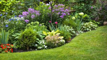 nejoblibejsi-ale-jsou-okrasne-zahrady-352x198.jpg