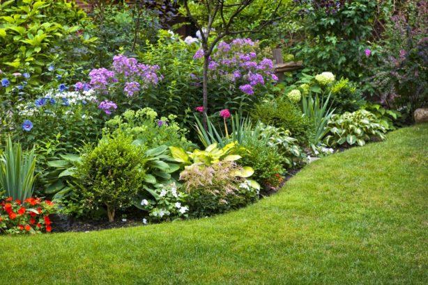 nejoblibejsi-ale-jsou-okrasne-zahrady-614x410.jpg