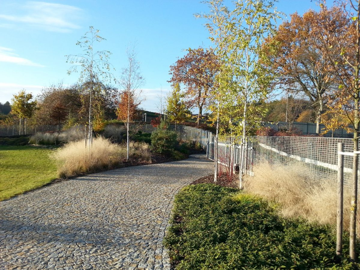 podzim-prebarvuje-stromy-do-ruznych-barevnych-odstinu-1200x1200.jpg