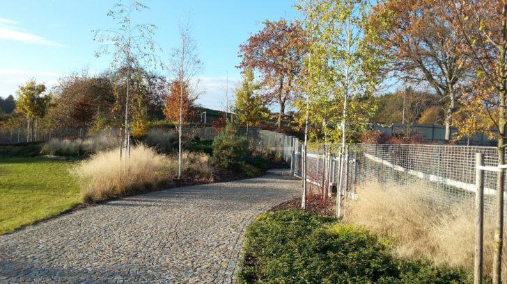 podzim-prebarvuje-stromy-do-ruznych-barevnych-odstinu-728x409.jpg