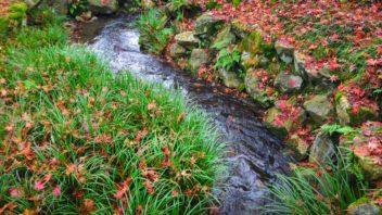 podzim-u-zahradniho-potoka-352x198.jpg