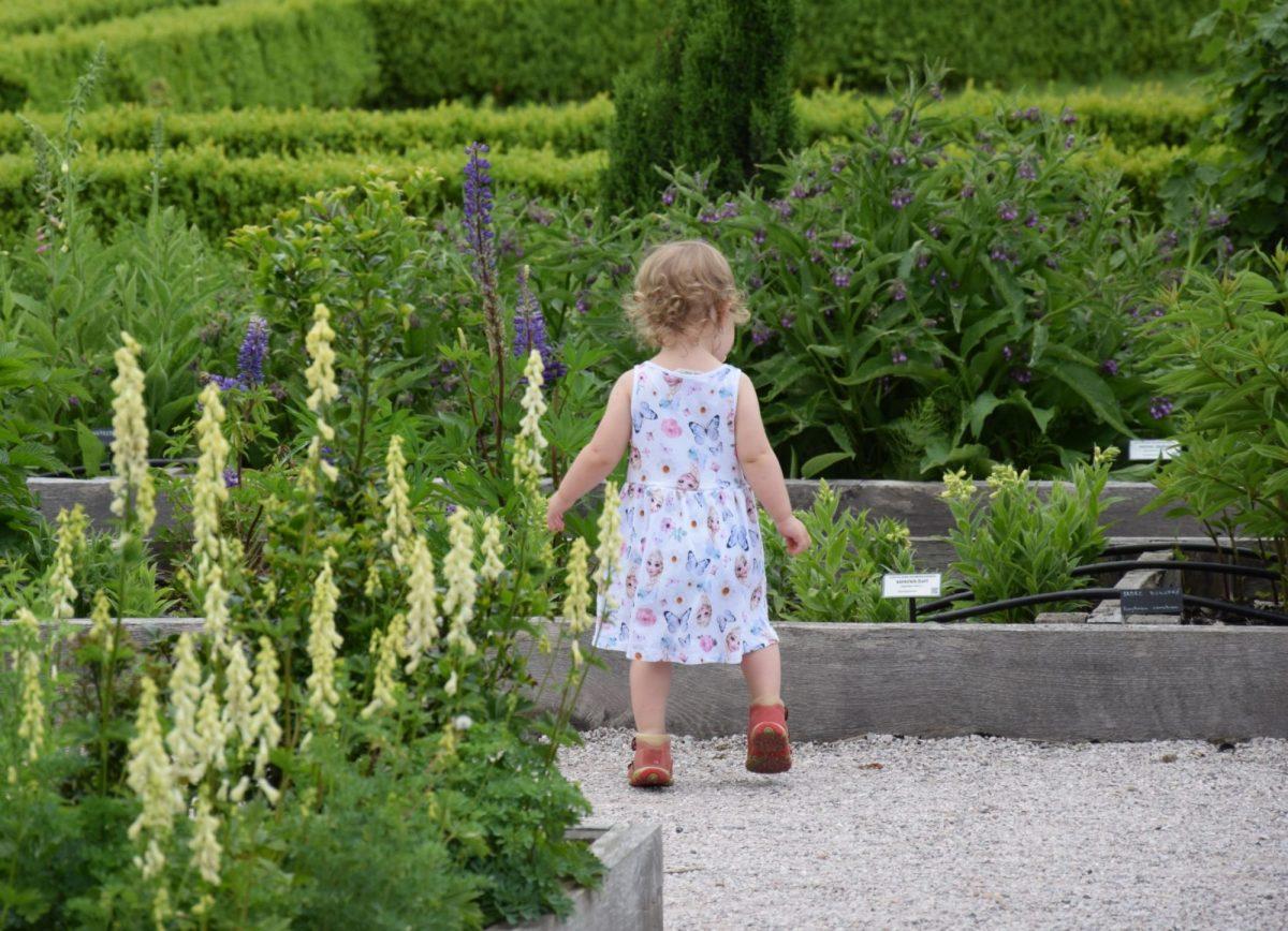 pri-planovani-zahrady-zohlednete-zda-bude-urcena-take-pro-male-deti-1200x1200.jpg