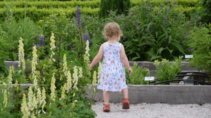 pri-planovani-zahrady-zohlednete-zda-bude-urcena-take-pro-male-deti-728x409.jpg