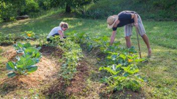 pro-mnohe-je-prace-na-zahrade-odpocinkem-352x198.jpg