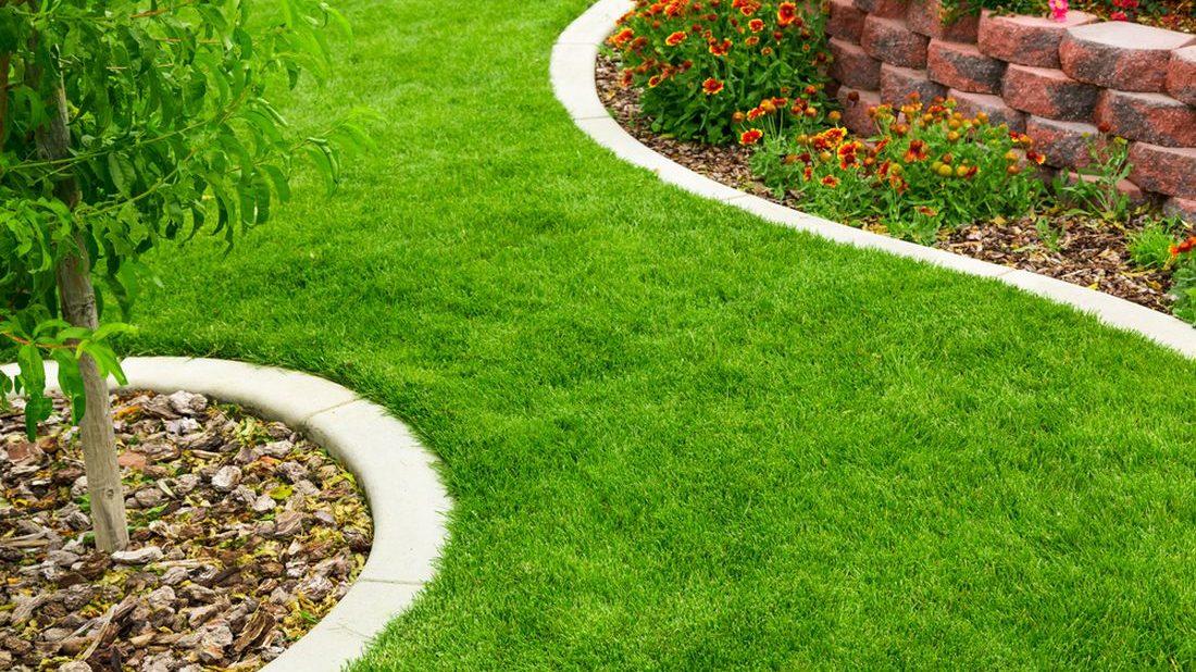 Tvorba trávníku