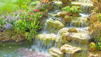 vodopad-vnese-zivot-352x198.jpg
