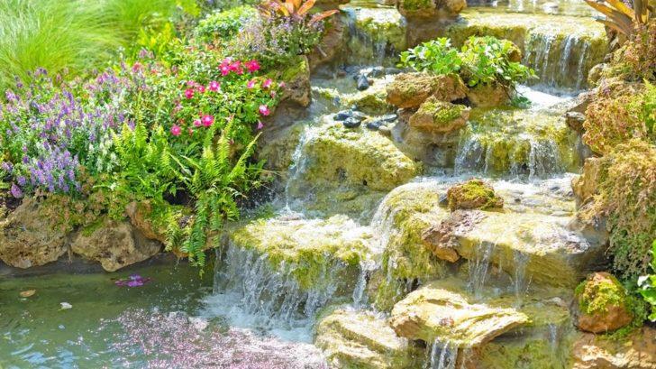 vodopad-vnese-zivot-728x409.jpg