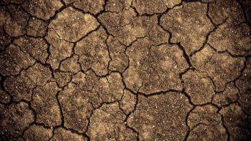 pro-jilovitou-pudu-je-typicka-tvorba-prasklin-v-dobe-sucha-352x198.jpg