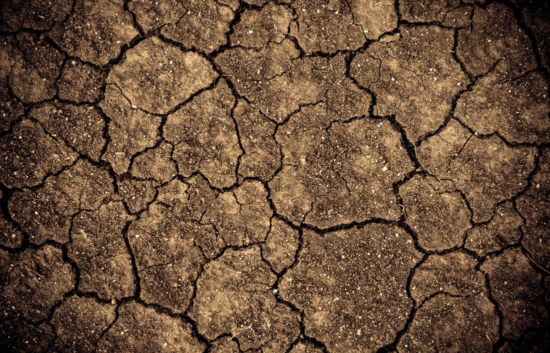 pro-jilovitou-pudu-je-typicka-tvorba-prasklin-v-dobe-sucha.jpg