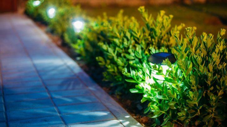 solarni-lampy-umistene-u-okraje-chodniku-mezi-buxusem-728x409.jpg