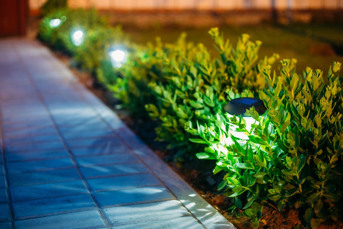 solarni-lampy-umistene-u-okraje-chodniku-mezi-buxusem.jpg