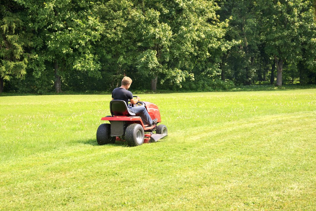 v-pripade-sekani-velkych-travnatych-ploch-se-vyplati-travnik-mulcovat.-nebudete-tak-mit-problem-s-kompostovanim-velkeho-mnozstvi-travy.jpg
