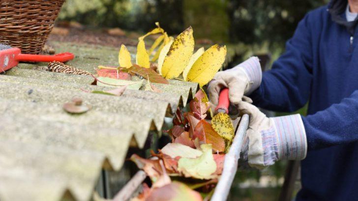 v-pripade-pritomnosti-stromu-v-blizkosti-strechy-bude-nutne-kontrolovat-filtry-urcite-casteji-728x409.jpg
